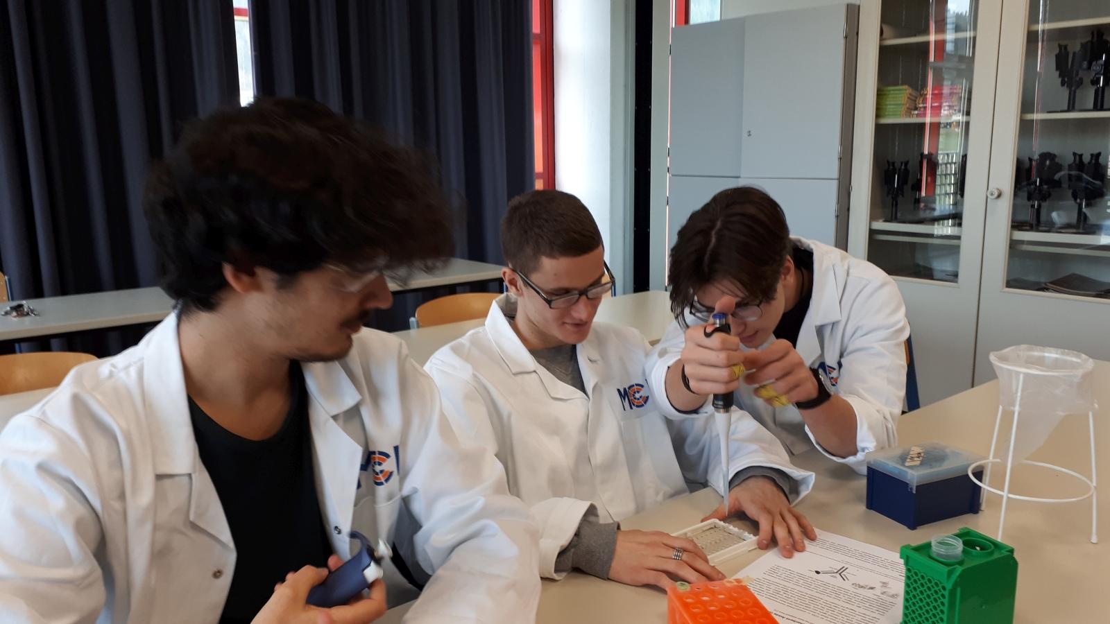 Science | BU | ELISA-Test | BRG Wörgl