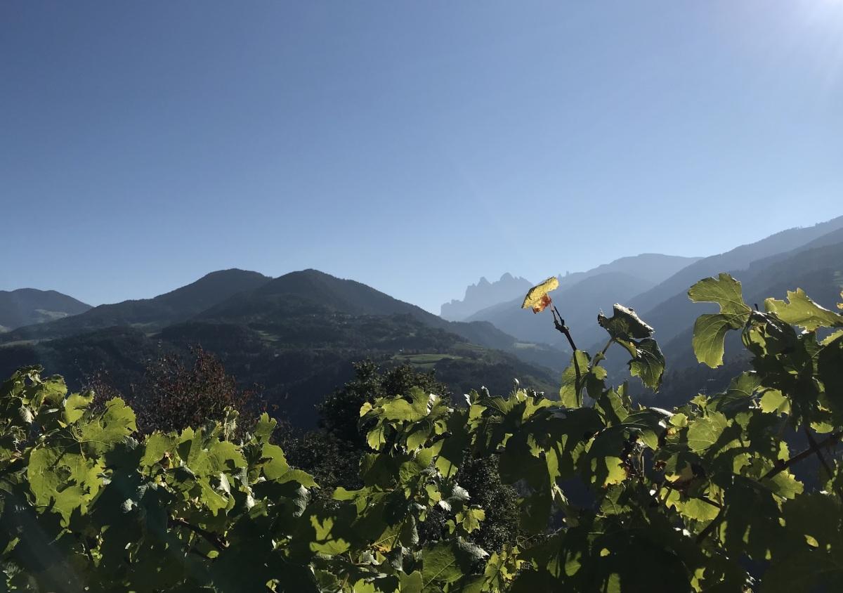 Direktorstag 2021 | Südtirol | BRG Wörgl